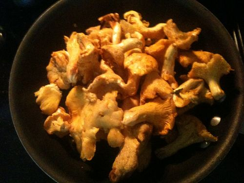 cooking chanterelle with butter and white wine